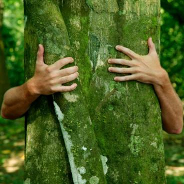 Mennesket og naturen